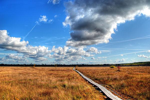 Clouds above the boardwalk in Tuhu, Estonia.