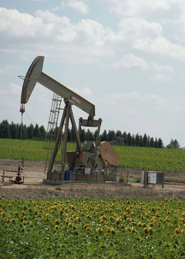 Photograph of a oil drilling rig in a field of sunflowers.