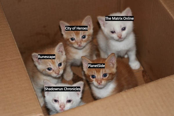 Photograph of kittens in a box labelled: The Matrix Online, City of Heroes, Runescape, PlanetSide, Shadowrun Chronicles.