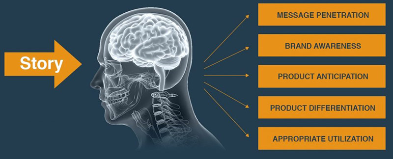 "Promotional image from sciencebranding.com demonstrating a focus on converting science into profit. It shows an arrow reading ""story"" pointing to an xray of a human head. On the other side of the head are lines connecting to rectangles with: message penetration, brand awareness, product anticipation, product differentiation, appropriate utilization."