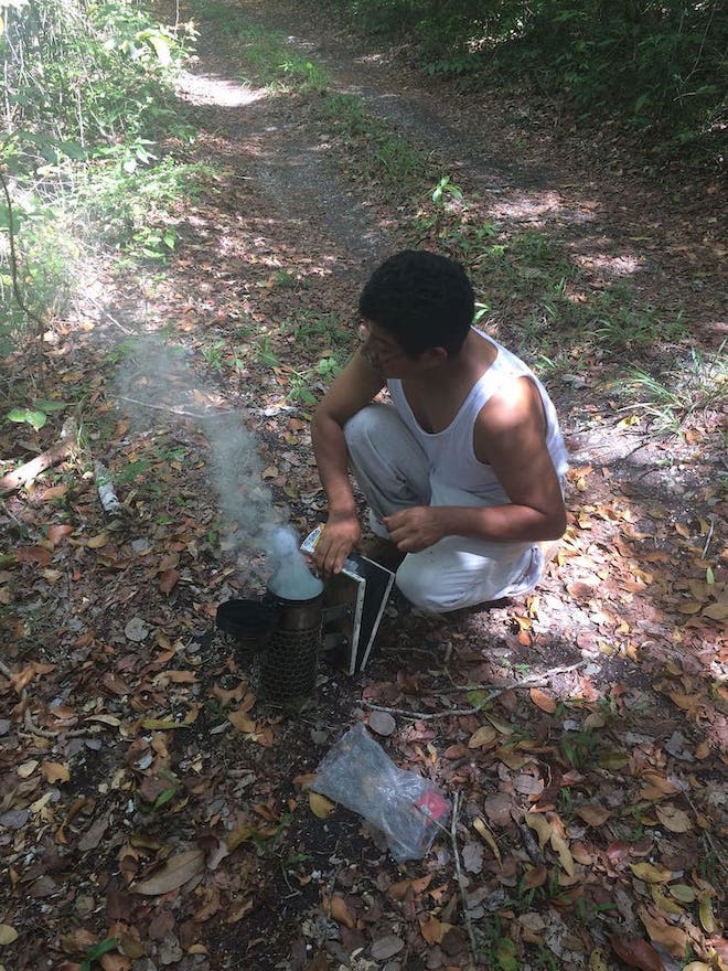 A man on a natural path prepares a smoker to visit his conservation-supported beekeeping venture in Calakmul Biosphere Reserve, Mexico