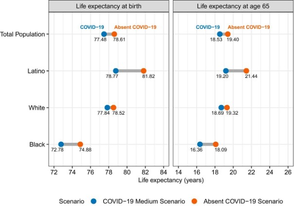 Two tables show life expectancy at birth and life expectancy at age 65. Described in footnote #1.