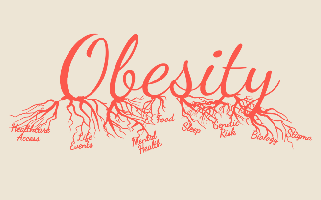 The word Obesity stylized as a system of connected blood vessels. The bottom of each letter from the word ramifies to other words: Healthcare Access, Life Events, Mental health, Food, Sleep, Genetic Risk, Biology, Stigma