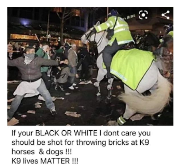 """The meme consists of a photograph of a protester about to throw a brick at a police horse and a caption that reads, """"If your BLACK OR WHITE I don't care you should be shot for throwing bricks at K9 horses & dogs !!! K9 lives MATTER !!!""""."""