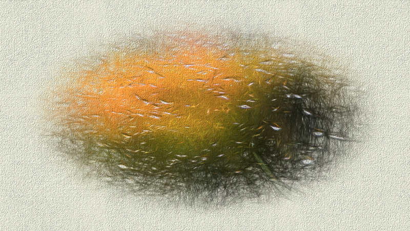 an abstract painting of a fish school