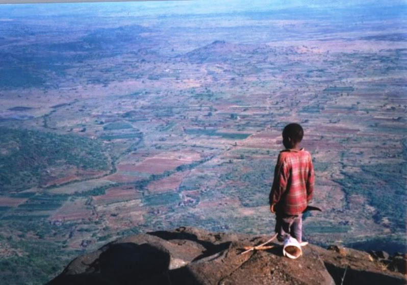 A boy, next to a musical instrument he made, stands upon a cliff and looks out at a mosaic landscape of forest and farmland in green, brown, and blue hues, that lay below and stretches to the horizon.
